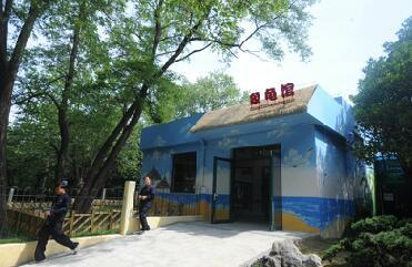 青岛动物园象龟馆开馆