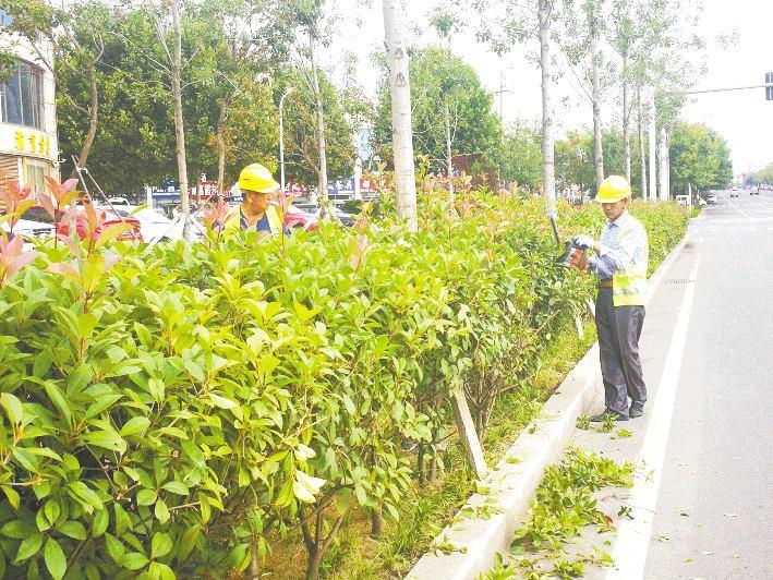 石臼街道推进创建国家园林城市工作